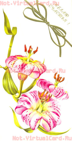 Ru бумажные поздравительные открытки